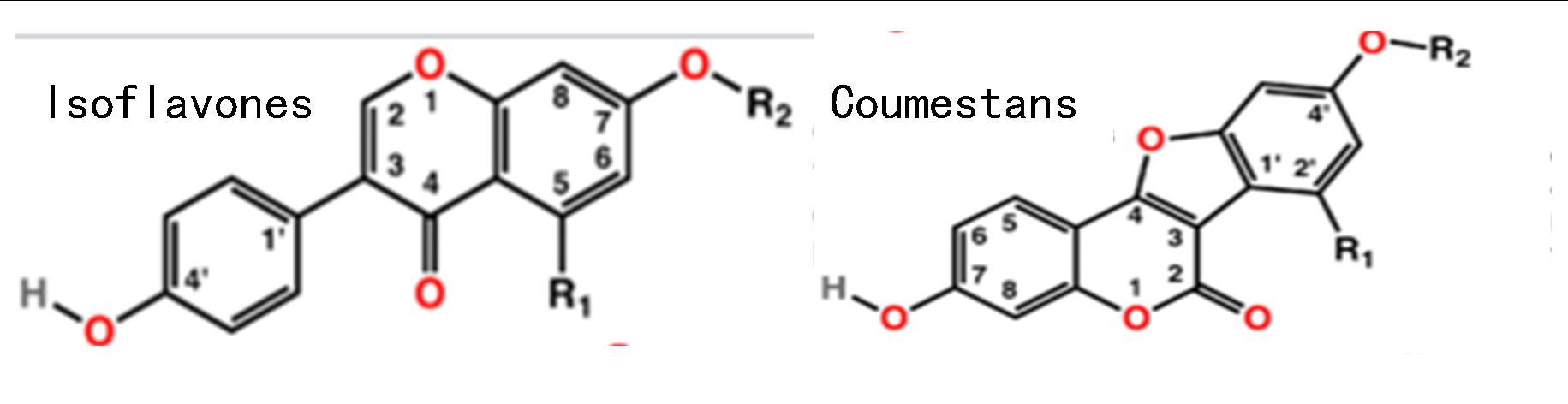 isoflavones coumestans